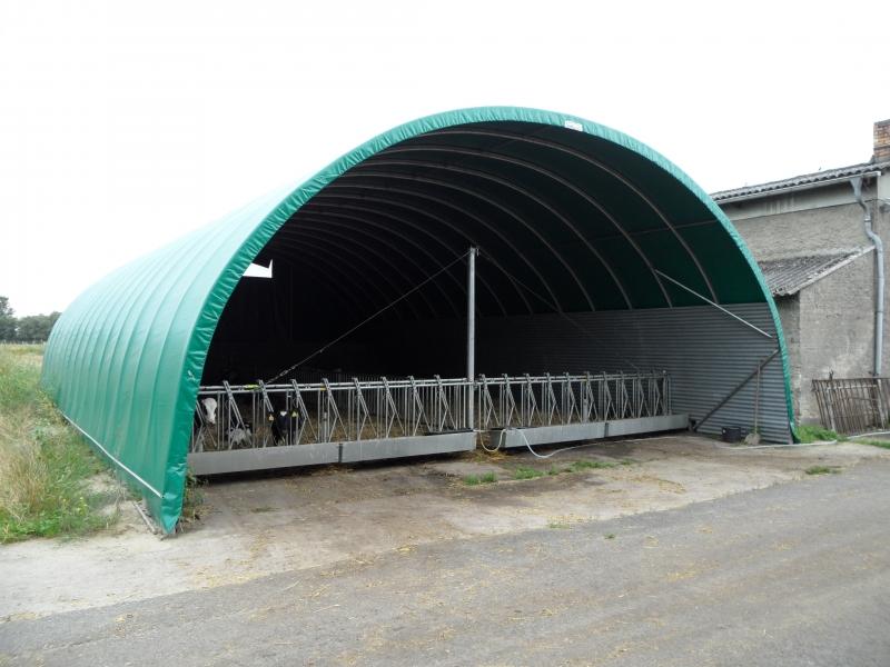 Cattle breeding tunnel - Germany